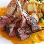お肉を使ったおすすめの手作りキャットフードレシピ公開!味付けのポイントもばっちり分かります!