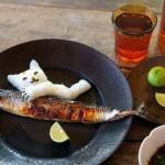 魚を使った愛情たっぷりのキャットフード手作りレシピ公開!調味料を一切使わないのがポイント!