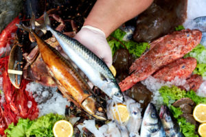 魚 キャットフード
