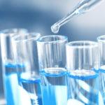 加水分解タンパク質 キャットフード