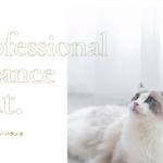プロフェッショナル・バランス pHコントロール&エクストラケア
