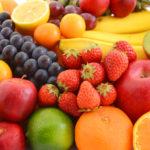 キャットフード 果物
