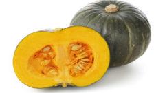 かぼちゃ Pumpkin キャットフード