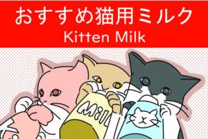 子猫用ミルク おすすめ