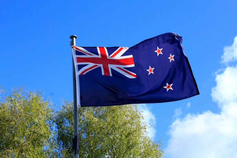 ニュージーランド キャットフード