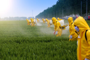 キャットフード 農薬 残留農薬